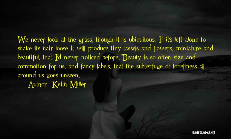 Size And Beauty Quotes By Keith Miller
