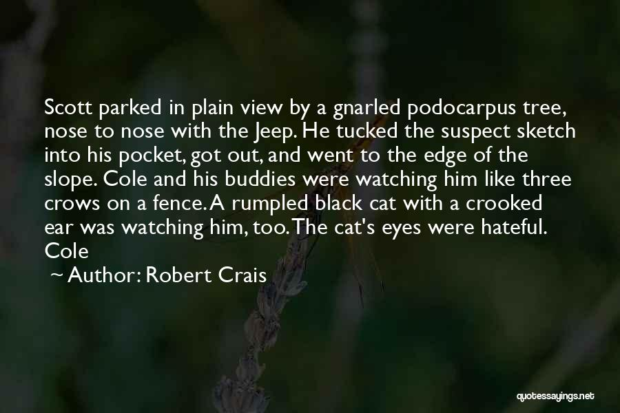Sketch Quotes By Robert Crais