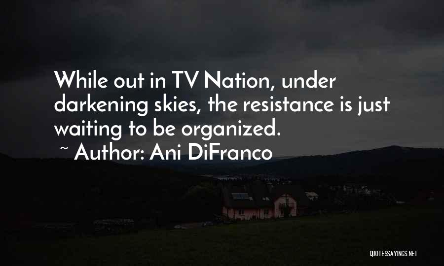 Skies Quotes By Ani DiFranco