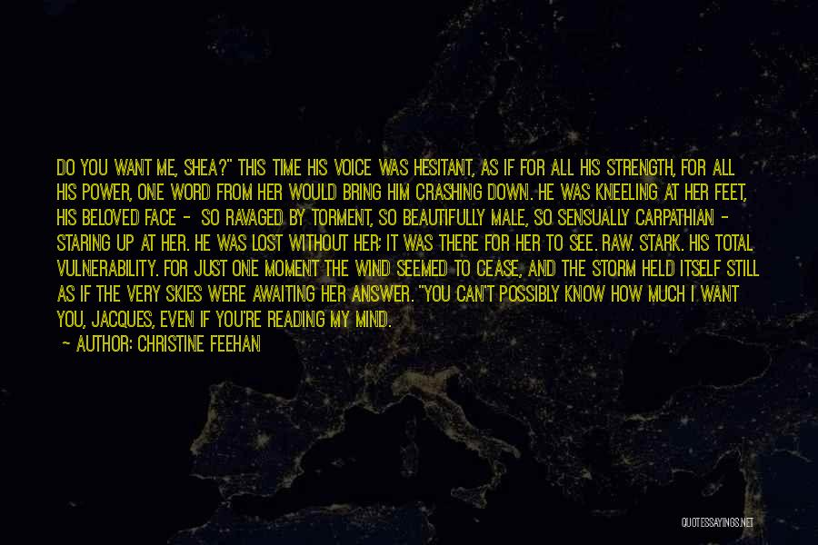 Skies Quotes By Christine Feehan