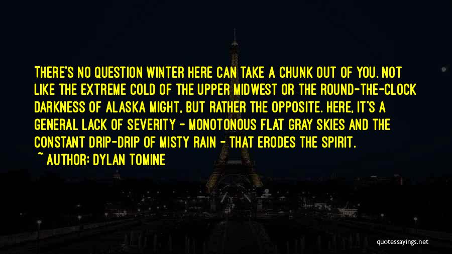 Skies Quotes By Dylan Tomine