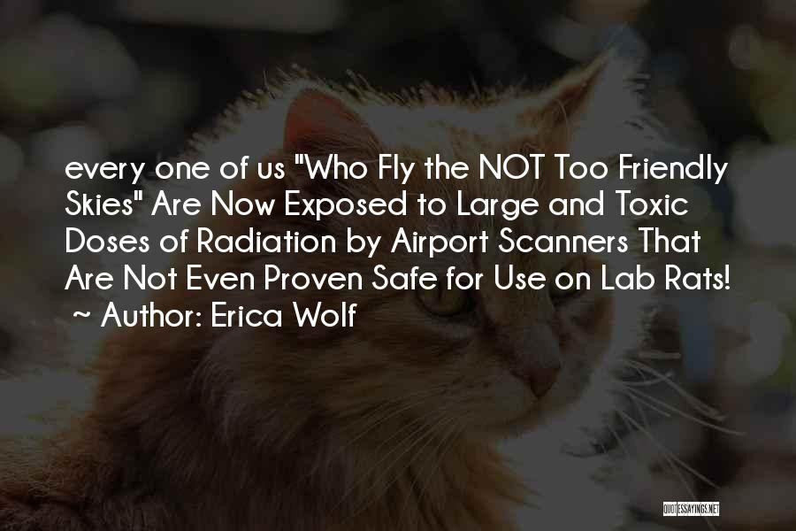 Skies Quotes By Erica Wolf