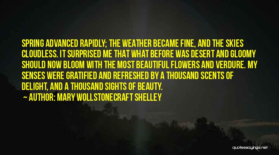 Skies Quotes By Mary Wollstonecraft Shelley