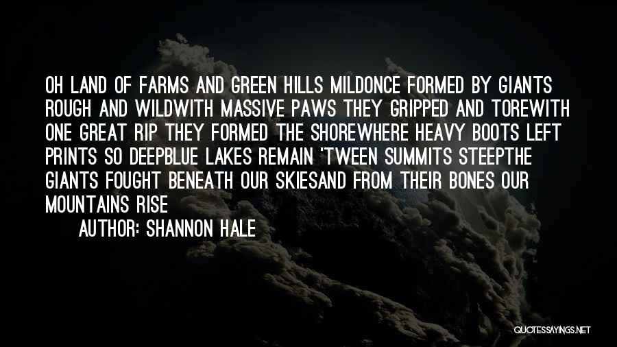Skies Quotes By Shannon Hale