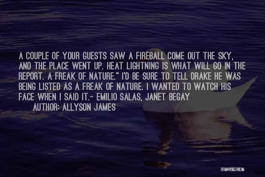 Sky Fire Quotes By Allyson James