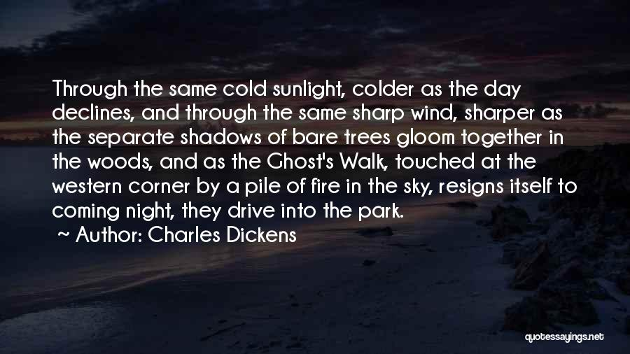 Sky Fire Quotes By Charles Dickens