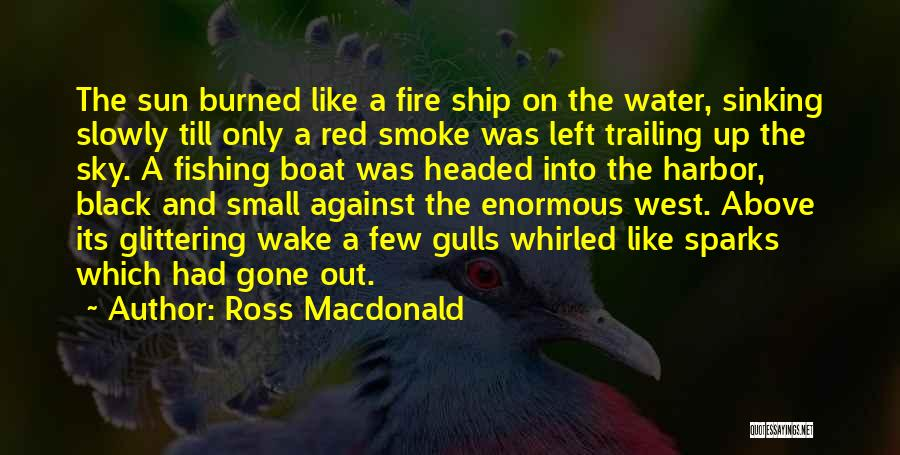 Sky Fire Quotes By Ross Macdonald