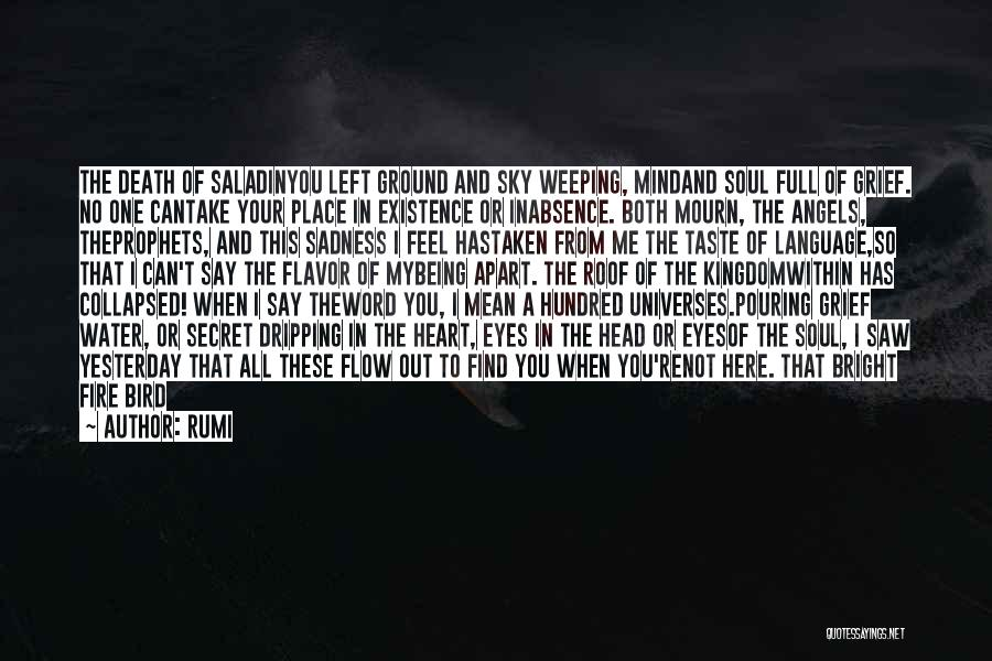 Sky Fire Quotes By Rumi