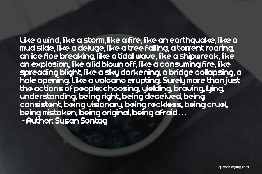 Sky Fire Quotes By Susan Sontag