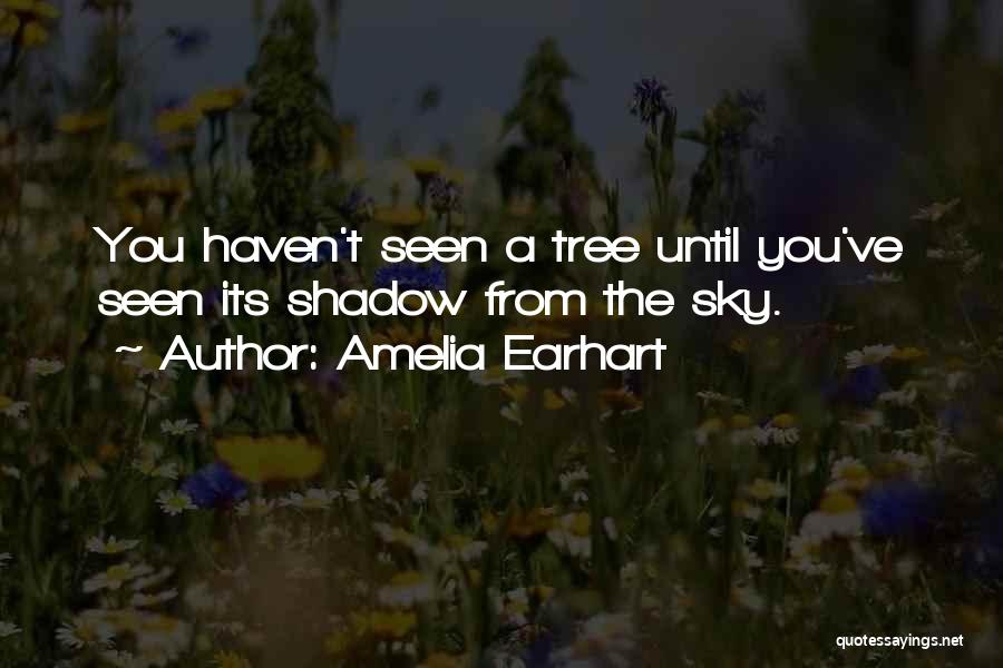 Sky Tree Quotes By Amelia Earhart