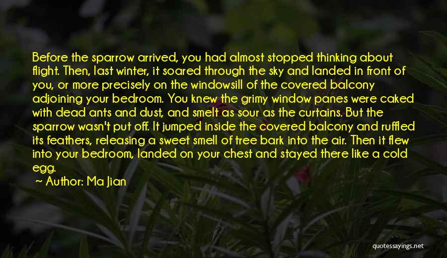 Sky Tree Quotes By Ma Jian
