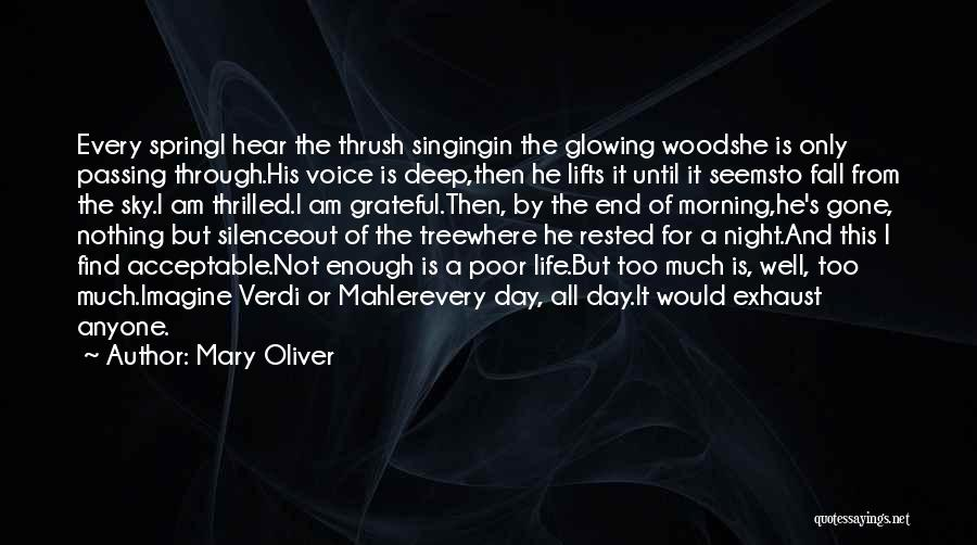 Sky Tree Quotes By Mary Oliver