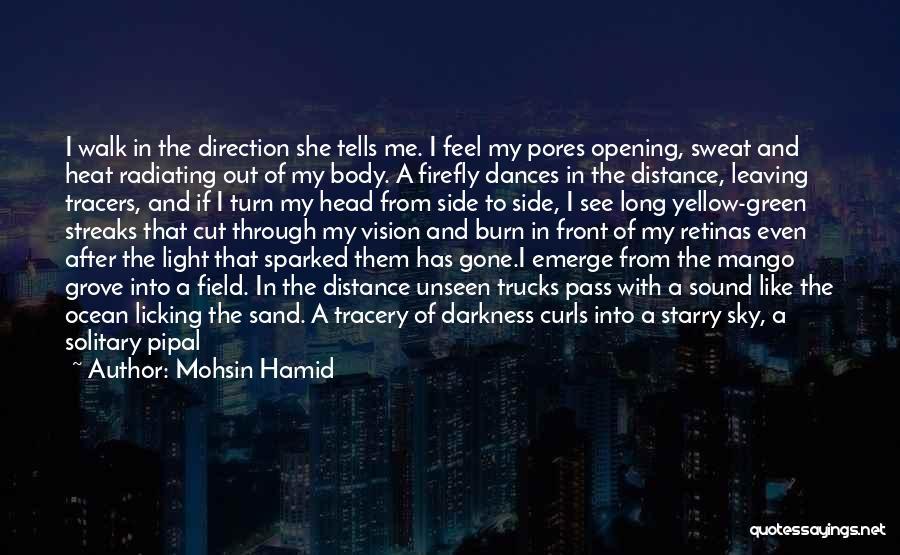 Sky Tree Quotes By Mohsin Hamid