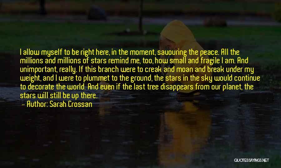Sky Tree Quotes By Sarah Crossan