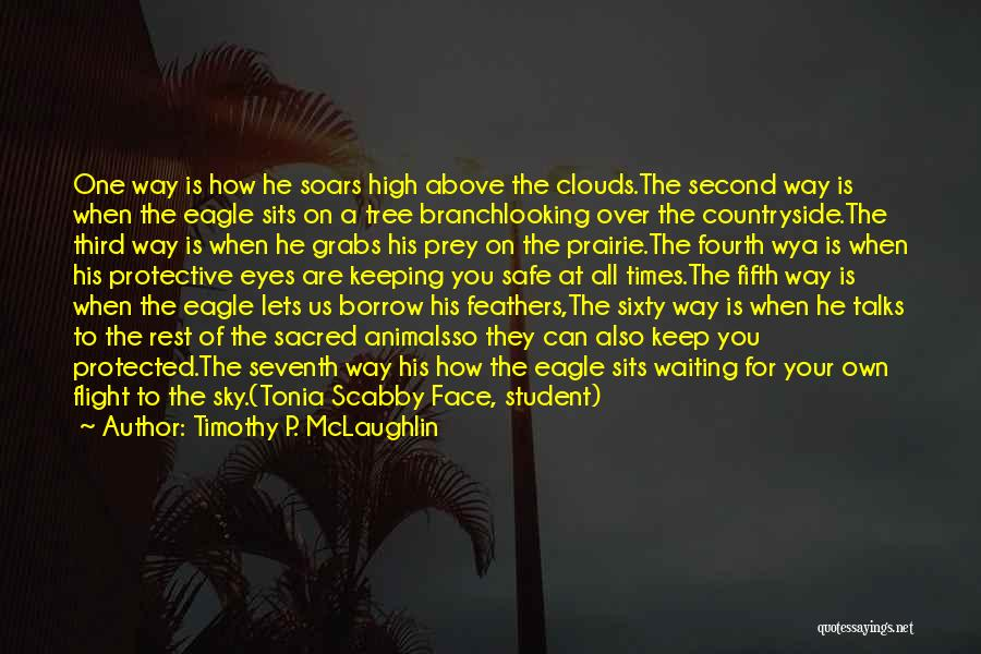Sky Tree Quotes By Timothy P. McLaughlin