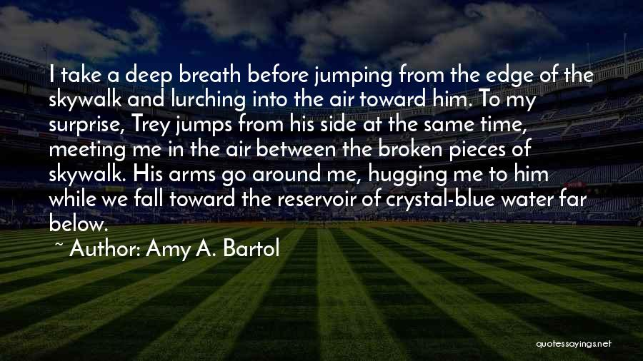 Skywalk Quotes By Amy A. Bartol