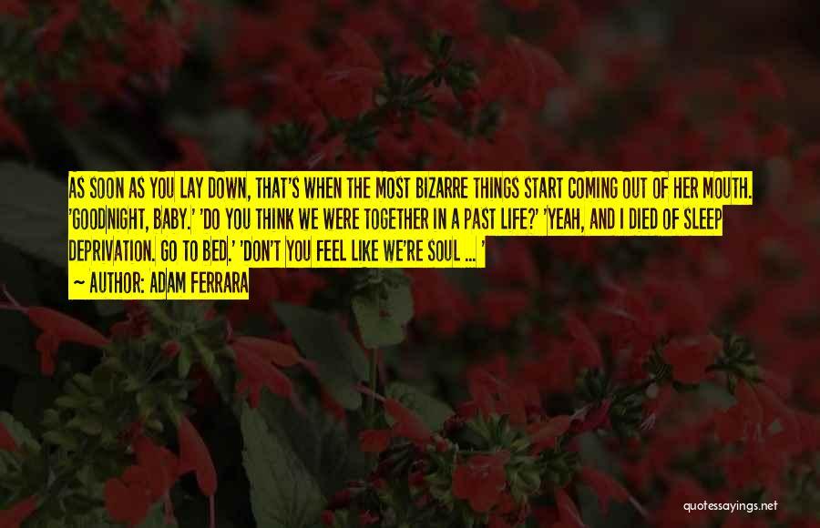 Sleep Funny Quotes By Adam Ferrara