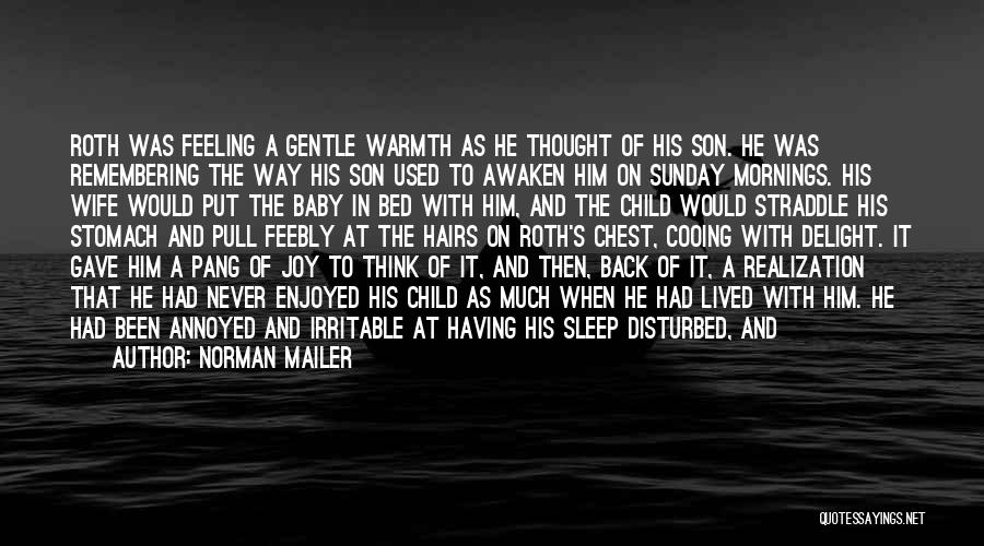 Sleep Funny Quotes By Norman Mailer