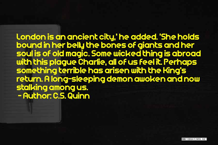 Sleeping Giants Quotes By C.S. Quinn