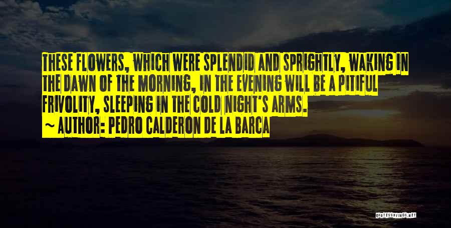 Sleeping In My Arms Quotes By Pedro Calderon De La Barca
