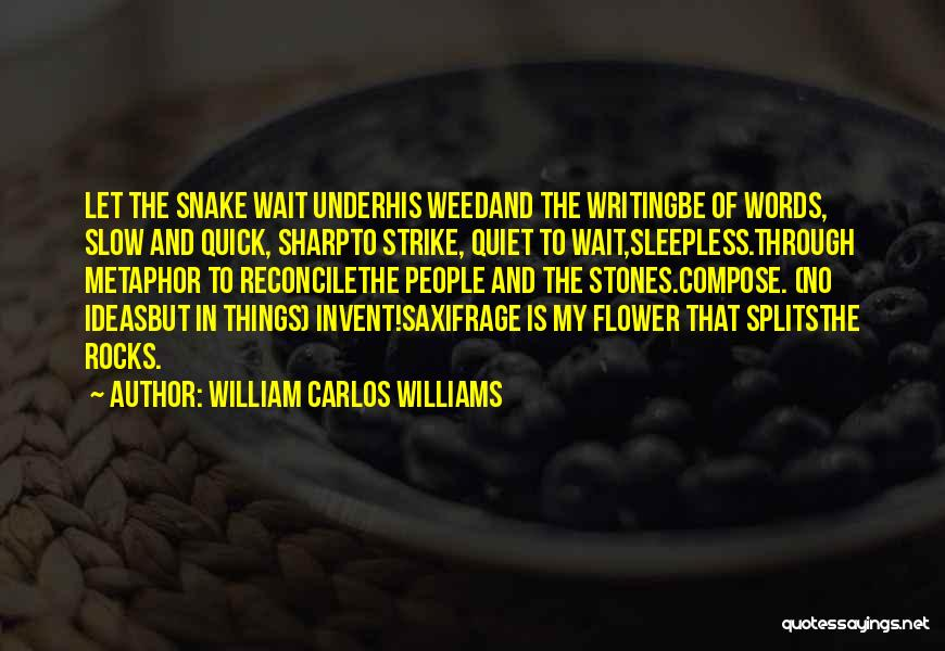 Sleepless Quotes By William Carlos Williams