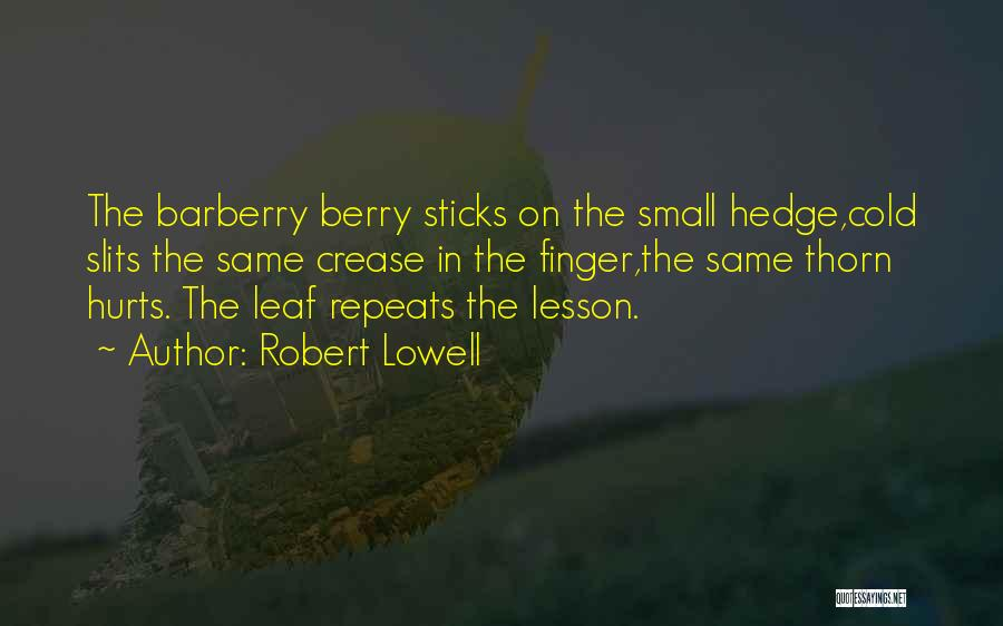 Slits Quotes By Robert Lowell