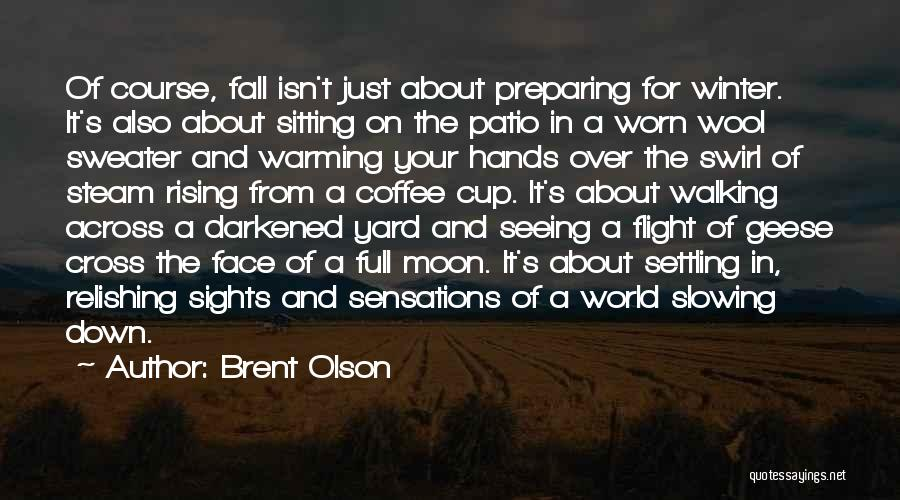 Slowing It Down Quotes By Brent Olson