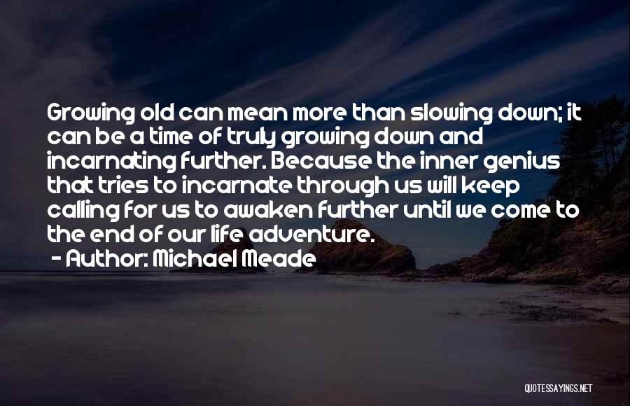 Slowing It Down Quotes By Michael Meade