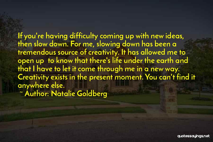 Slowing It Down Quotes By Natalie Goldberg