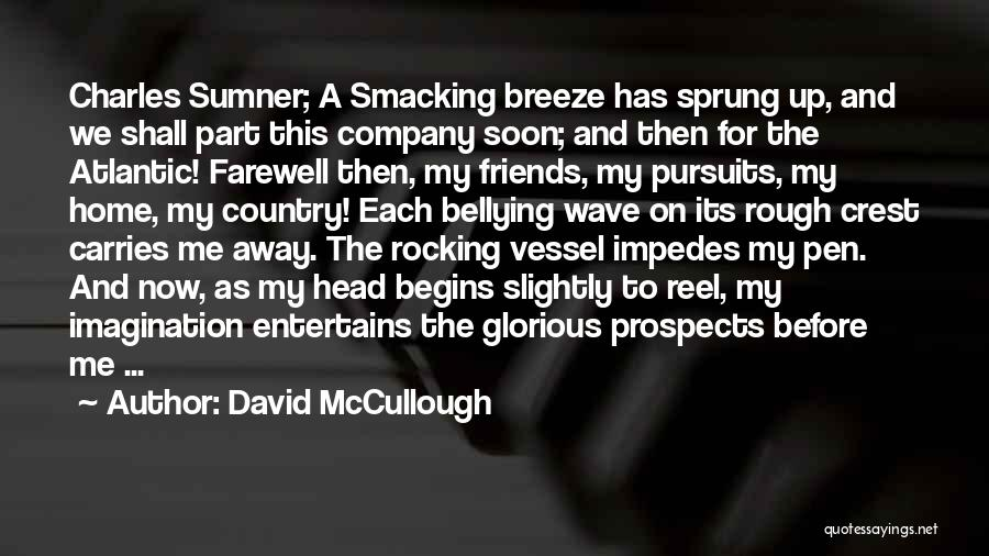 Smacking Someone Quotes By David McCullough