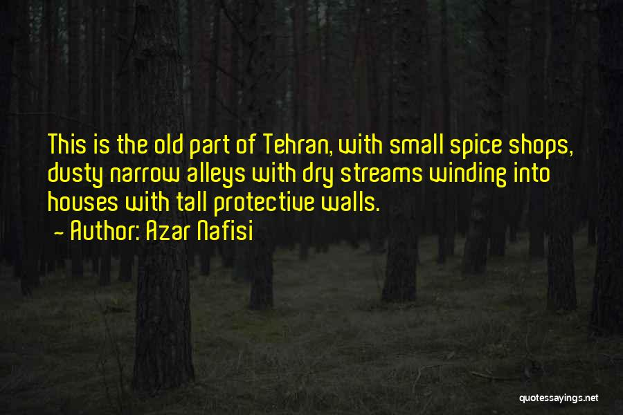Small Alleys Quotes By Azar Nafisi