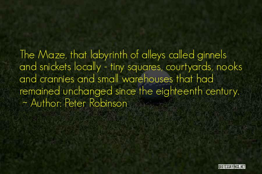 Small Alleys Quotes By Peter Robinson