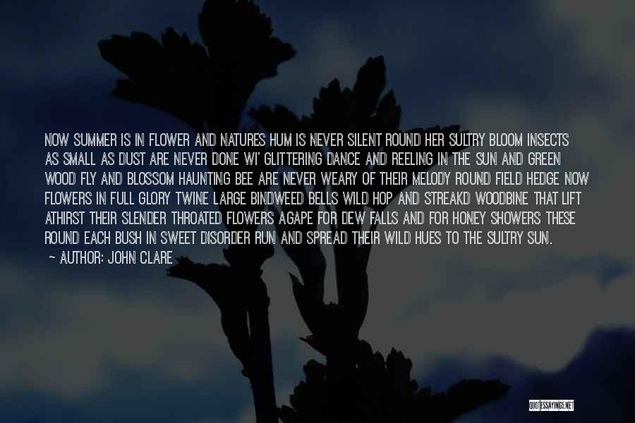 Small And Sweet Quotes By John Clare