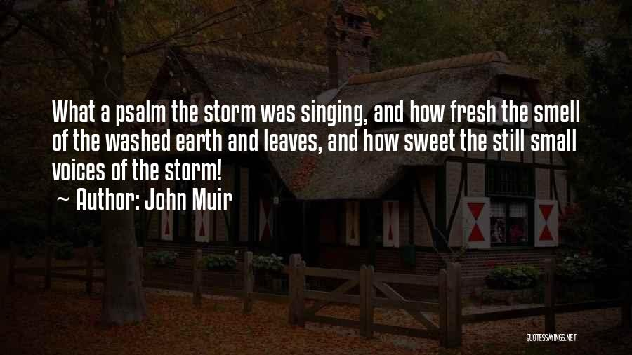 Small And Sweet Quotes By John Muir