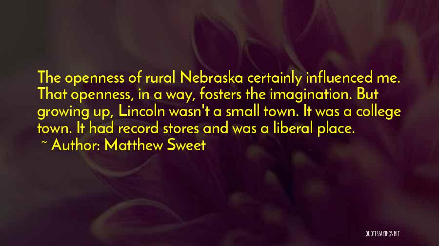 Small And Sweet Quotes By Matthew Sweet