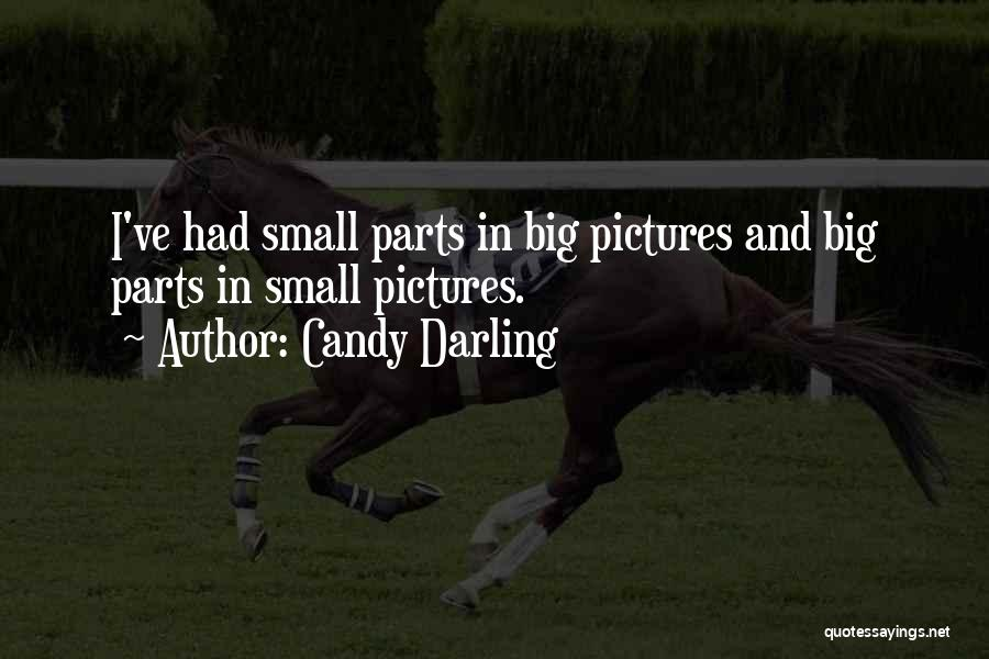 Small Parts Quotes By Candy Darling