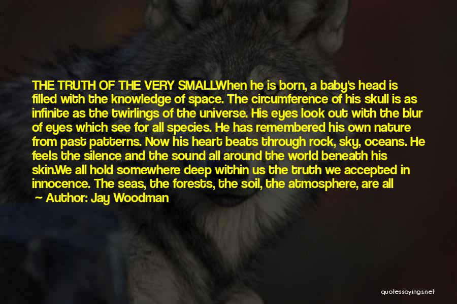 Small Parts Quotes By Jay Woodman