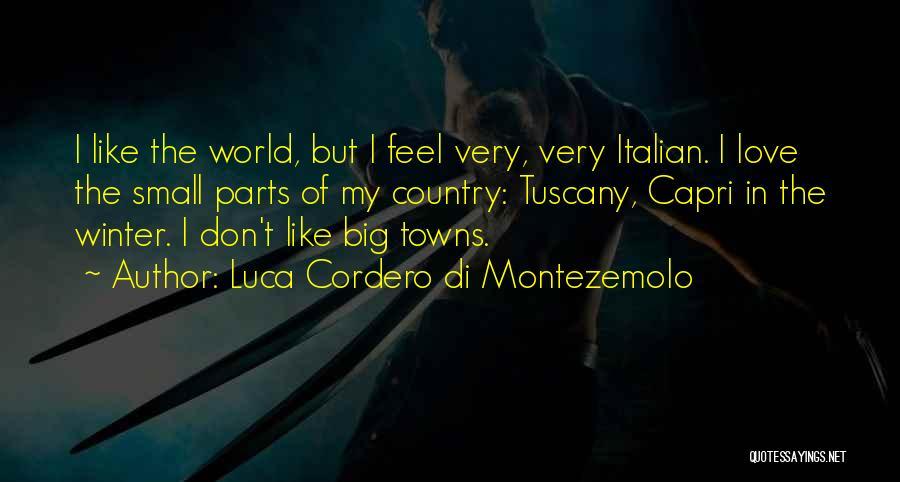 Small Parts Quotes By Luca Cordero Di Montezemolo