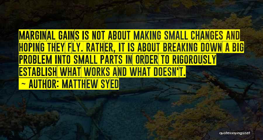 Small Parts Quotes By Matthew Syed