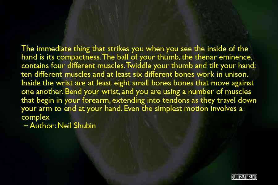 Small Parts Quotes By Neil Shubin