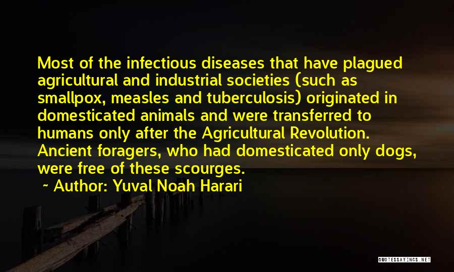 Smallpox Quotes By Yuval Noah Harari