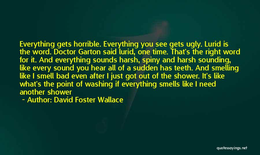 Smelling Bad Quotes By David Foster Wallace
