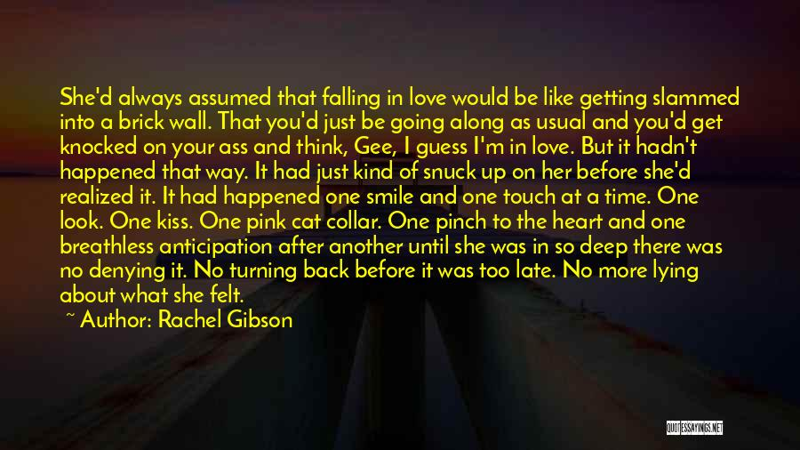 Smile Like Nothing Happened Quotes By Rachel Gibson