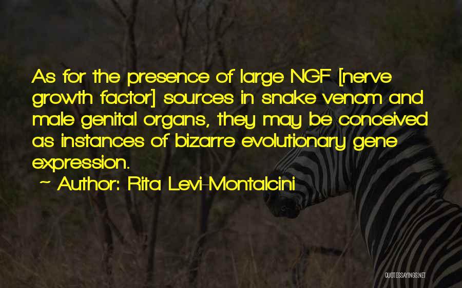 Snake Venom Quotes By Rita Levi-Montalcini