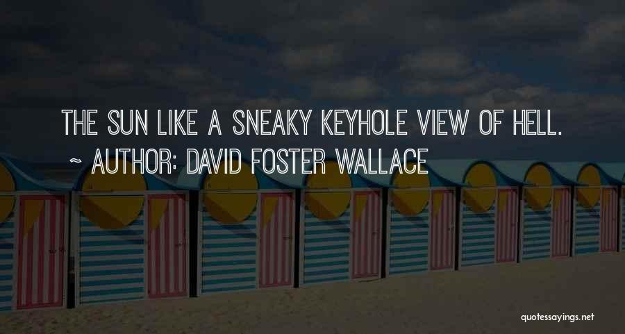 Sneaky Quotes By David Foster Wallace