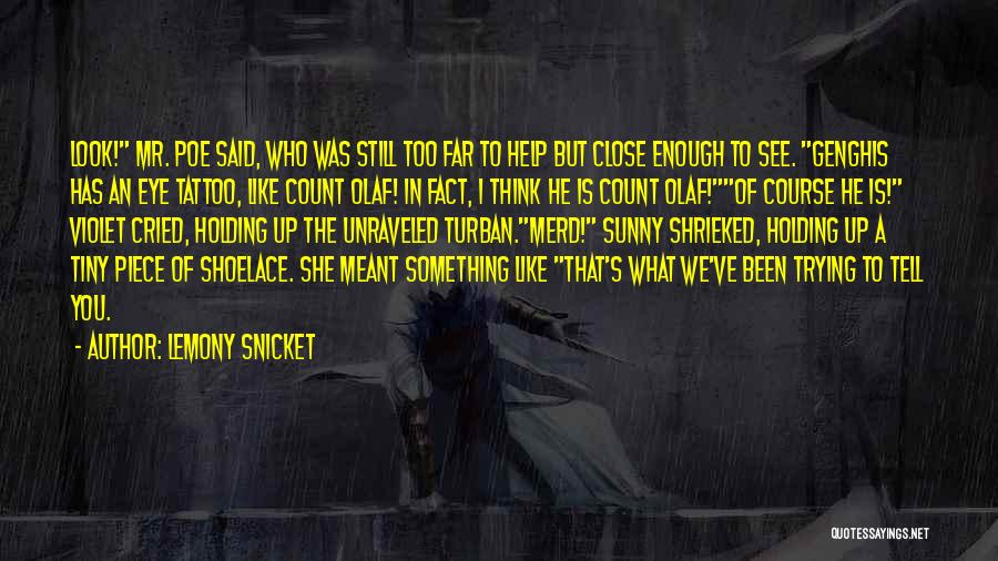 Sneaky Quotes By Lemony Snicket