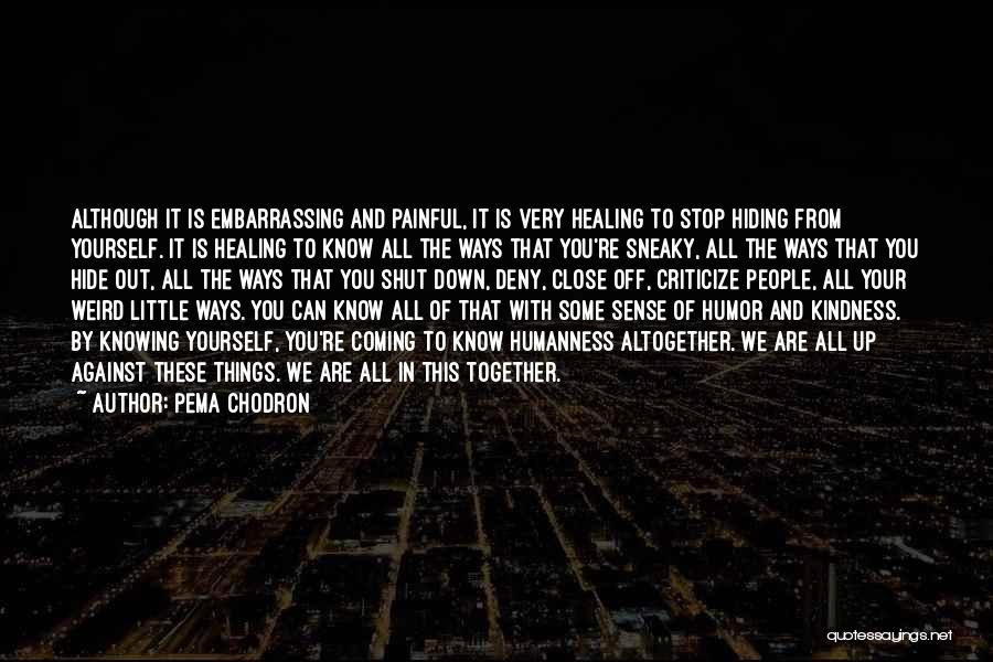 Sneaky Quotes By Pema Chodron