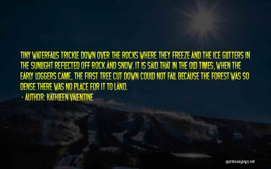 Snow Land Quotes By Kathleen Valentine
