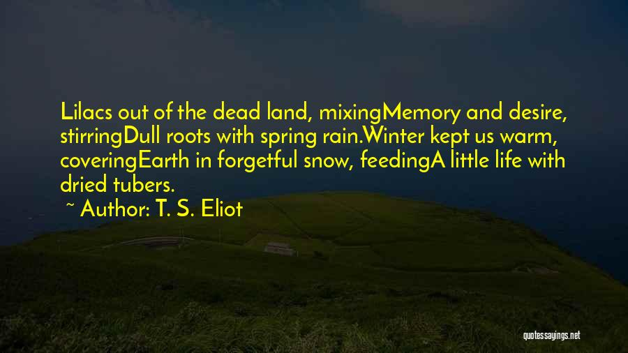 Snow Land Quotes By T. S. Eliot