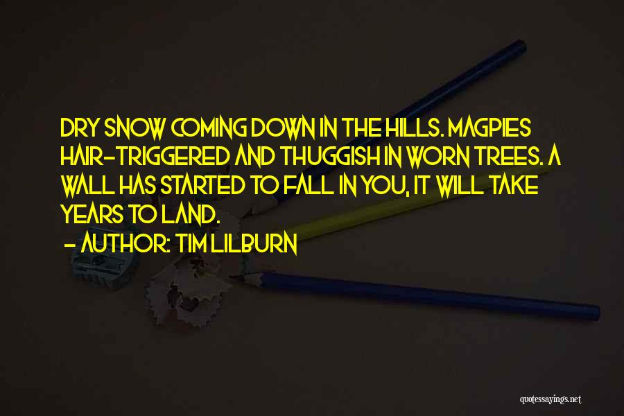Snow Land Quotes By Tim Lilburn